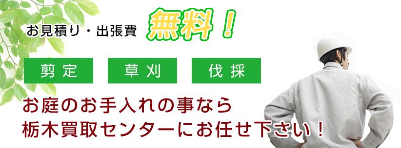 お庭のお手入れの事なら栃木買取センターにお任せ下さい!